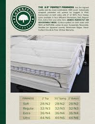 Pheonix Tx Adjustable Bed Electric Ergo Motion Power Base Motorized Foundation Latex Mattresses
